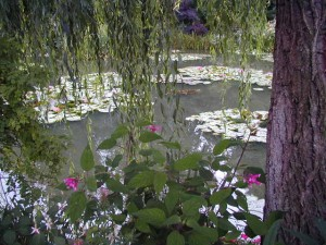 Colour Photograph of 'Water Lilies & Willow Tree' in Claude Monet's Garden at Giverny, Normandy.  Taken by CJ Walsh.  2004-08-29.