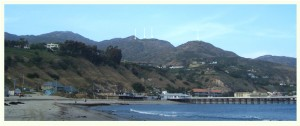 Colour photograph, extracted from the Project Fact Sheet (available to download from the 'Leaves in the Wind' WebSite), showing the view from Surfrider Beach of The Edge's Proposed 5 House Coastal Development in Malibu, California. The hilltop locations of 4 of the houses are indicated by white arrows. Where is the last house ? Click to enlarge.