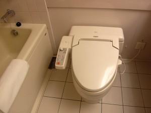 Japan - Toilet Unit (1)